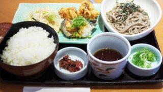 和食さと日替り定食は鮭唐揚げおろしポン酢&若鶏の唐揚げ